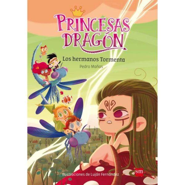 Princesas dragón 5: Los hermanos tormenta
